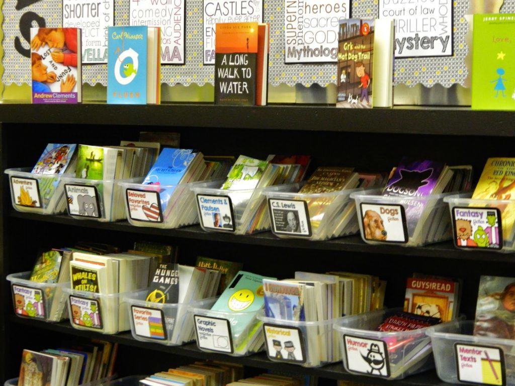 Super Curating A 5Th Grade Classroom Library The Brown Bag Teacher Home Interior And Landscaping Spoatsignezvosmurscom