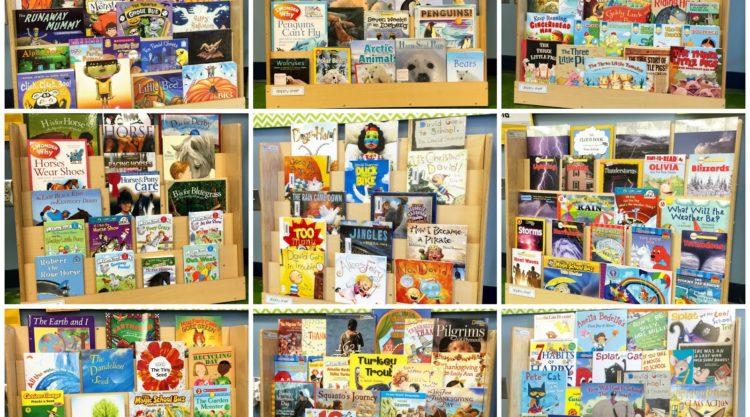 Library Book Display Shelf