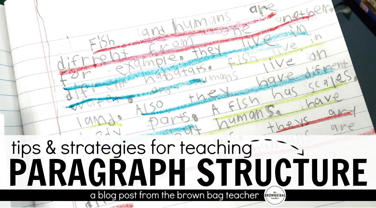 paragraph writing in st and nd grade  the brown bag teacher